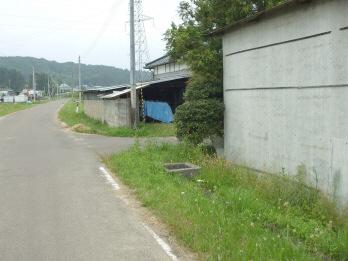 matsunokishita2.jpg