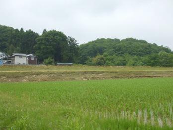 ookurayama1.jpg