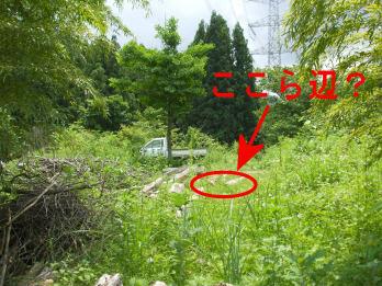 ootayama6.jpg