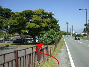 yakushikouen3.jpg