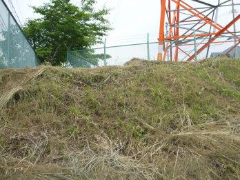 yoshinari2.jpg