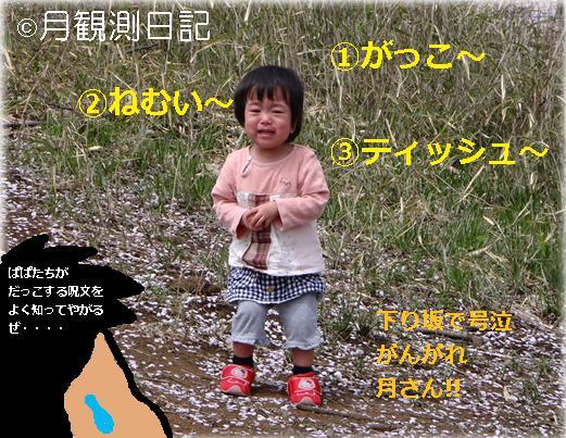20120413tsuki1.jpg