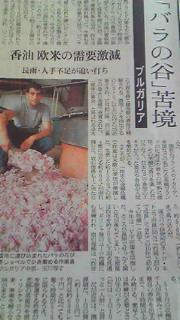 moblog_346f85d2.jpg