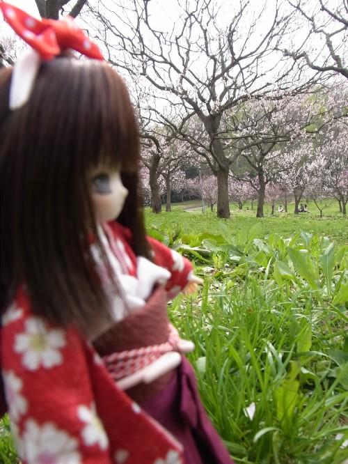 平岡公園21
