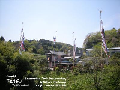 大久保-鯉のぼり100426