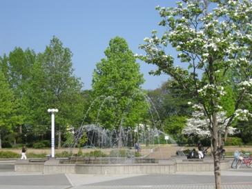 2010噴水のある公園