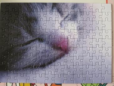 2010ねこパズル