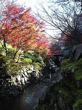 猿投温泉の紅葉