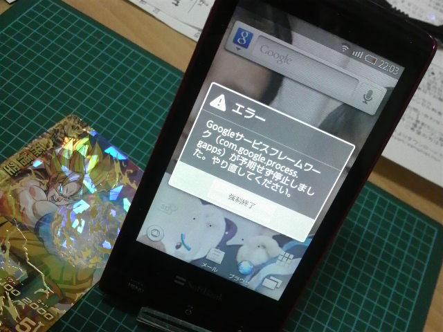 P1009824_20101229001234.jpg