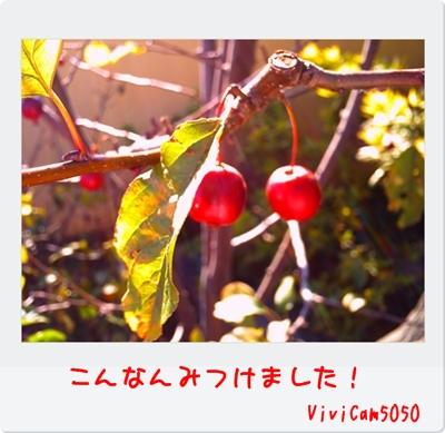 PICT0202.jpg
