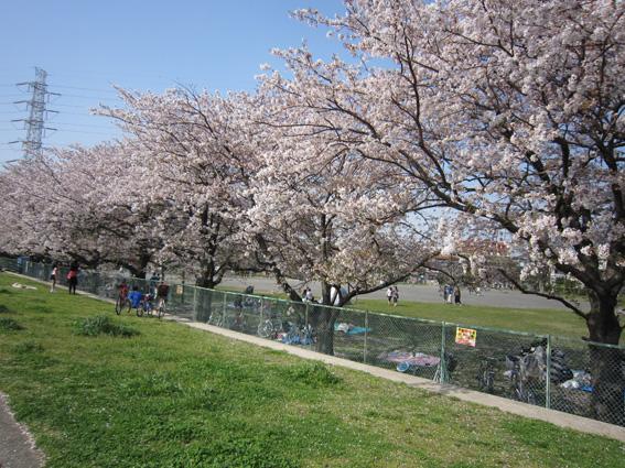 うづひよ公園