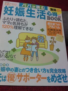 SN3J0162_convert_20100108180200.jpg