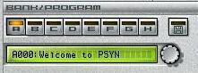 PSYN_II_Bank_01.jpg