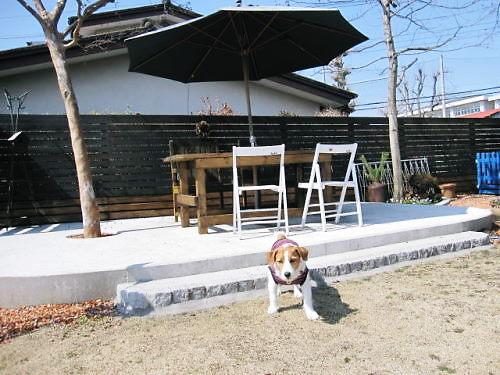 2011おでかけ124