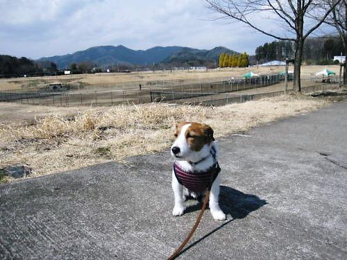 2011おでかけ116