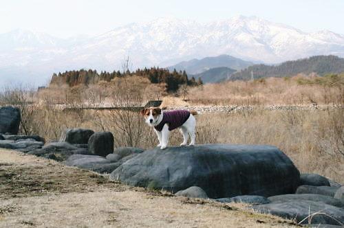 2011おでかけ134