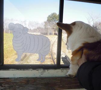 お約束のハコノリで外を眺め