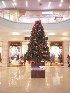 24日 クリスマス (2)
