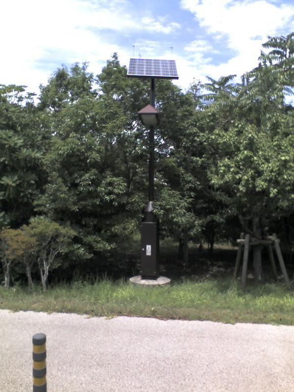 葛西臨海公園:街灯