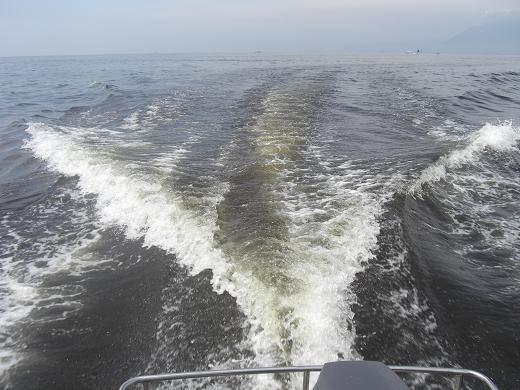 20100710赤潮