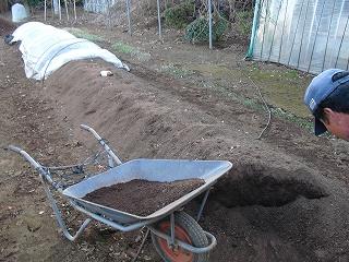 消毒後の床土
