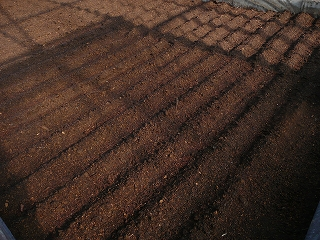土を盛って水を撒く