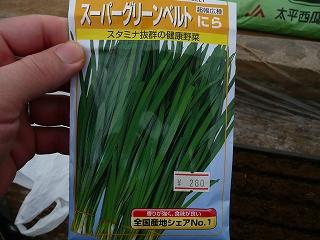 スーパーグリーンベルト(280円)