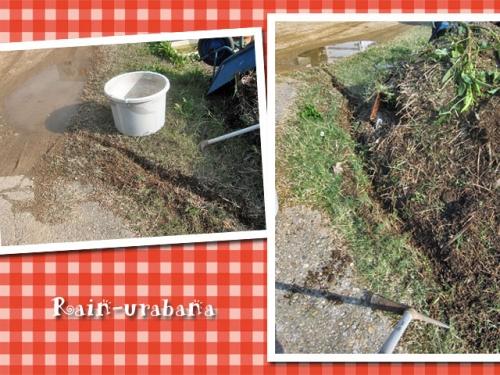排水路掘り開始♪