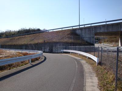 20100115_03