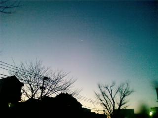 画像-0039