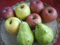 産直りんご