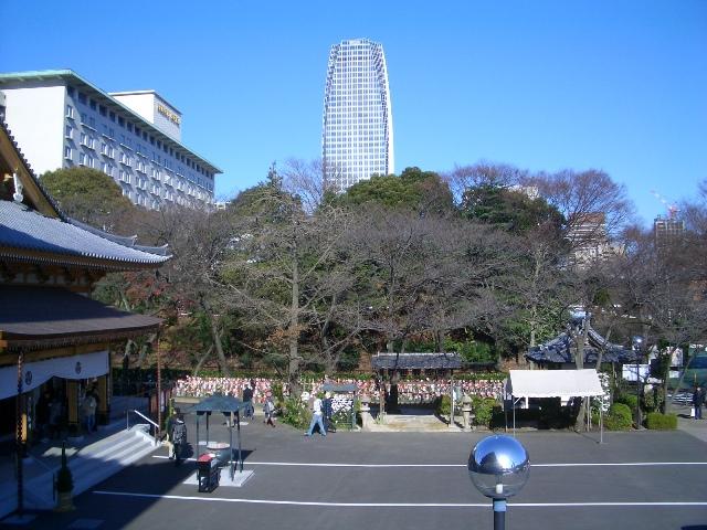 shiba0024.jpg