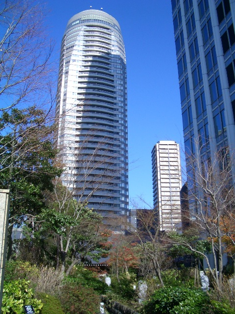 shiba0072.jpg