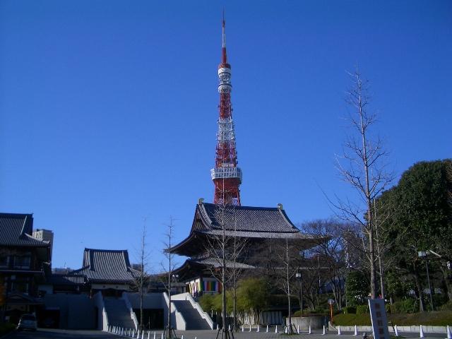 shiba0092.jpg