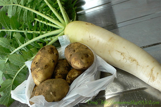 potatodaikon.jpg