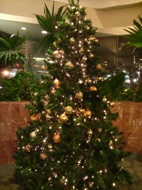 ミラマーアットワイキキのツリー2