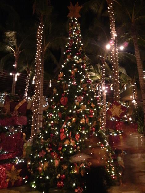 ロイヤルハワイアンS.Cのツリー夜