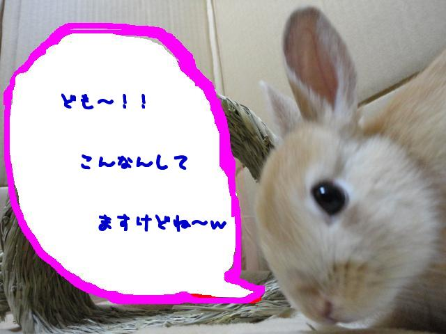 ghjk (3)