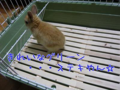 6vpcu79s_convert_20100119224011.jpg