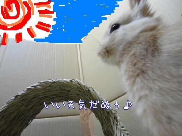 ghjk_20100305235435.jpg