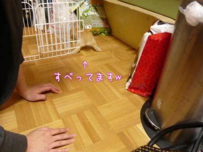 hh7_convert_20100216224103.jpg