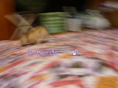 nESEol8g_convert_20100219005855.jpg