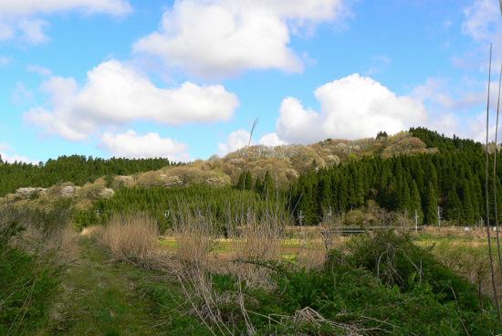 100509 岩見川土手道から梵字川の山を見る