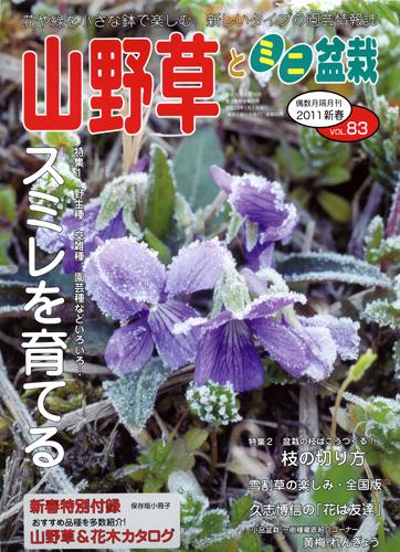 山野草とミニ盆栽