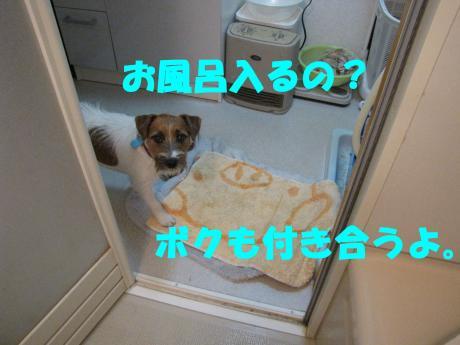 rovin1_convert_20091129222708[1]