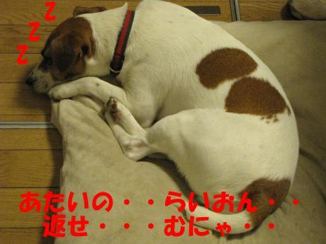 縺・§繧・▲縺・0_convert_20091206213331[1]