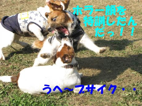 縺後≧縺後≧6_convert_20091208230449[1]