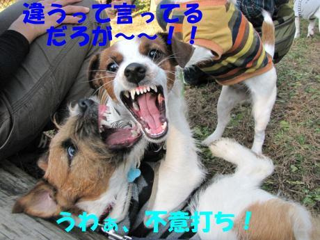 縺後≧縺後≧11_convert_20091208230725[1]