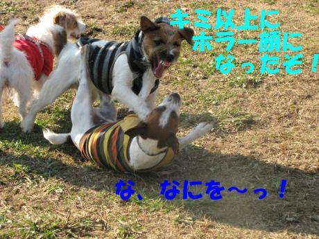 縺後≧縺後≧7_convert_20091208230515[1]