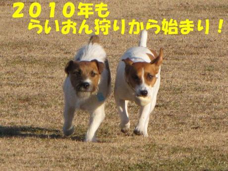 蜈・率5_convert_20100102232114[1]